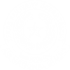 Texas Army National Guard Logo(White)